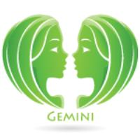 Zodiac sign for Gemini